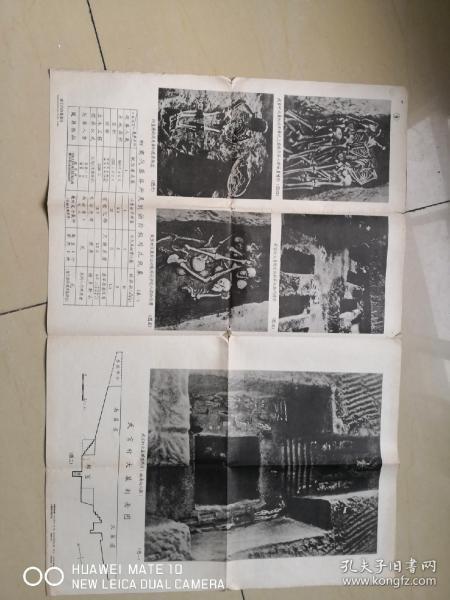 50骞翠唬���叉���撅���������澧�����锛�瀵瑰�锛�