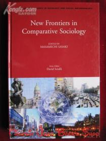 New Frontiers in Comparative Sociology(英语原版 精装本)比较社会学的新领域