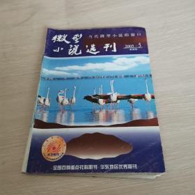 微型小说选刊 2005.5