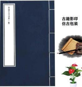 中国文学沿革一瞥 光华书局 赵祖拚 1928年版[复印本]