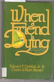 When a Friend is Dying : A Guide to Caring for the Terminally Ill and Bereaved
