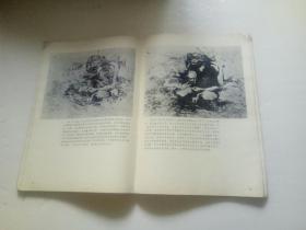 理查-司契米德画人体
