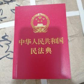 中华人民共和国民法典(64K)