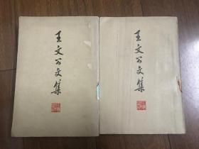 王文公文集(上下)