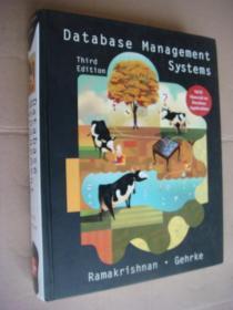 Database Management Systems 英文原版12开厚重本