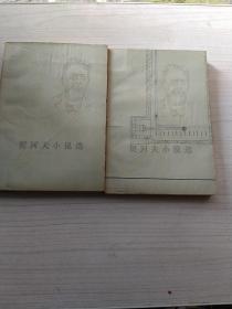 契诃夫小说选(上下)