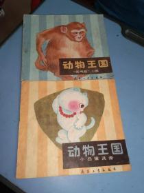 动物王国:小白猫洗澡+淘气包小猴