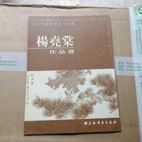 当代中国书画家作品选:杨尧棠作品选