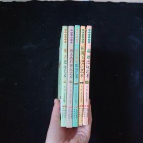 把玩艺术系列:四大名石把玩艺术+琥珀蜜蜡把玩艺术+和田玉把玩艺术+翡翠把玩艺术+葫芦把玩艺术  共5本合售