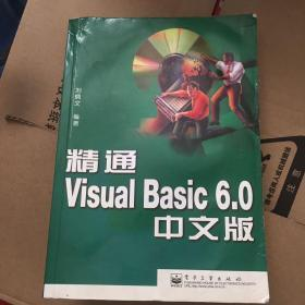 精通 Visual Basic 6.0 中文版