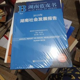 湖南蓝皮书:2019年湖南社会发展报告