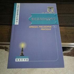 当代法国思想文化译丛: 斯宾诺莎的实践哲学