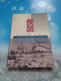 疾风-共和国空战纪实