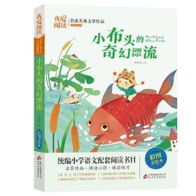 我爱阅读小布头的奇幻漂流 统编小学语文配套阅读儿童文学作品