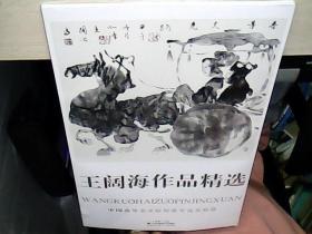 中国高等美术院校教学范本精选 王阔海作品精选  (全新未拆封)