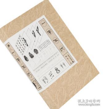 雅活书系 一字不识 林之 李玲芝 一本文艺范儿的 识字书立足自身经历和历史故事 诠释汉字之美 正版书籍 全新现货