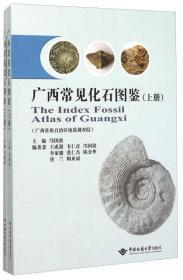 广西常见化石图鉴 下册