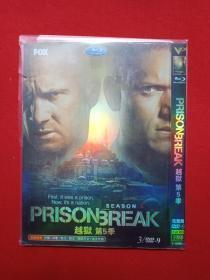 DVD-9光碟存2碟片1盒装FOX完整版《越狱:Prison Break第5季》2017年(葛·艾坦尼斯执导,保罗·舒尔灵编剧,温特沃思·米勒和多米尼克·珀塞尔主演)