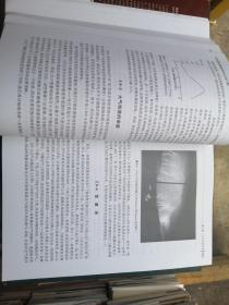 费恩曼物理学讲义(第2卷):新千年版