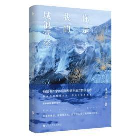 你是我的城池营垒 沐清雨军旅三部曲 青春文学现代都市言情感小说