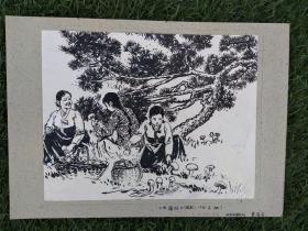 《采蘑菇》插图原稿,1981年发表于《延边日报》,作者:曹金石(素描)完好10品,规格:20.8×16.2㎝