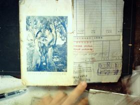 G787.稀见民国老版精品新文学小说《泰山伏虎》,勃罗夫斯 著,章铎声 译,前有珂罗版照片2幅,内有插图。