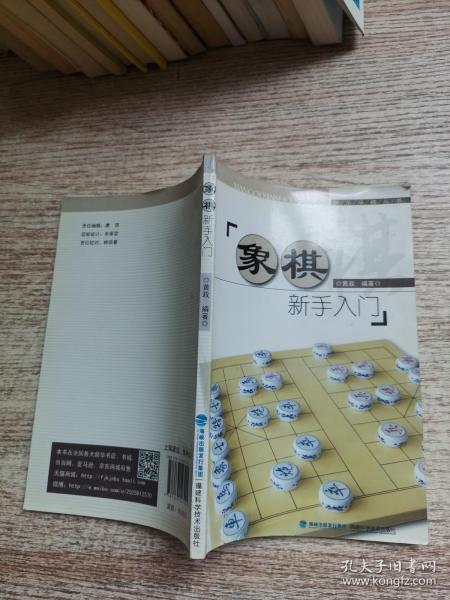 快乐学棋丛书:象棋新手入门