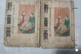 民国言情小说野蔷薇11