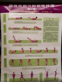 腰椎疾病功能锻炼挂图