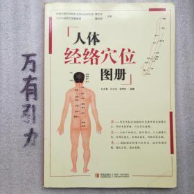 人体经络穴位图册