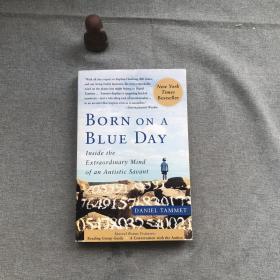 Born On A Blue Day:Inside the Extraordinary Mind of an Autistic Savant