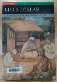 法文原版书 Lieux d'Islam : Culte et Culture de l'Afrique à Java (Français) Broché – 9 février 1996 de Collectif (Auteur), Mohammad Ali Amir-Moezzi (Sous la direction de)