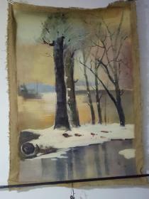 冬天的白桦树