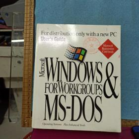 Microsoft Windows for Workgroups   MS-DOS