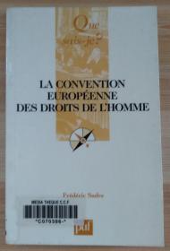 法文原版书 La Convention européenne des droits de l'homme (Français) Broché – 1 décembre 1990 de Frédéric Sudre  (Auteur)