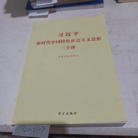 习近平新时代中国特色主义思想30讲