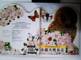 亮丽精美触摸书-小猫头鹰奥奇