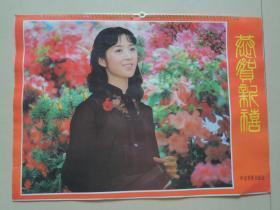 挂历 1985年潘虹,刘晓庆,张瑜,郭凯敏等影视明星(13张全)
