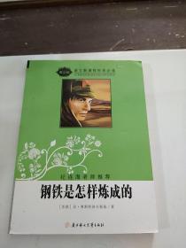 语文新课程标准必读(青少版):钢铁是怎样炼成的(纪连海老师推荐)
