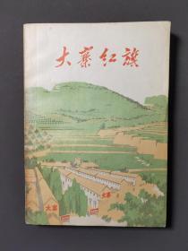大寨红旗(文革小说)