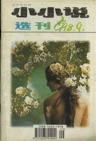 小小说 选刊 1998 9