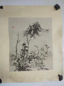 约民国时期  水印木刻 八大山人 纸本古画2幅  绢裱镜心 有霉斑 每个尺寸35x24
