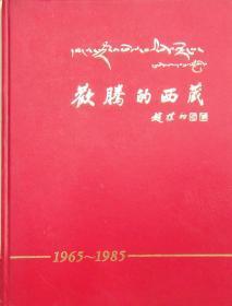 欢腾的西藏1965-1985