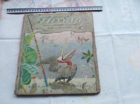 大开本硬精装外文原版彩色儿童文学类似连环画: THE STORY OF FLORIDA。盖国立罗斯福图书馆藏章。封面下方有个1817,不知道是不是出版时间