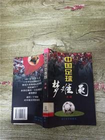 中国足球梦难圆【馆藏】