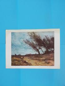 阵风--柯罗(1796--1875)