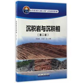 正版旧书 沉积岩与沉积相(第二版)何幼斌王文广石油工业出版社