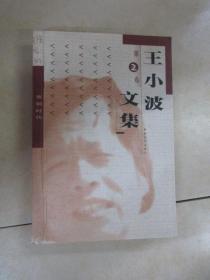 王小波文集  第2卷