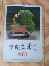 1987年挂历:中国盆景