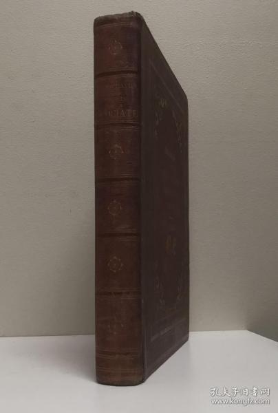 1878年,古斯塔夫.多雷 《十字军东征史》,100幅气势磅礴原版全页顶级木刻。